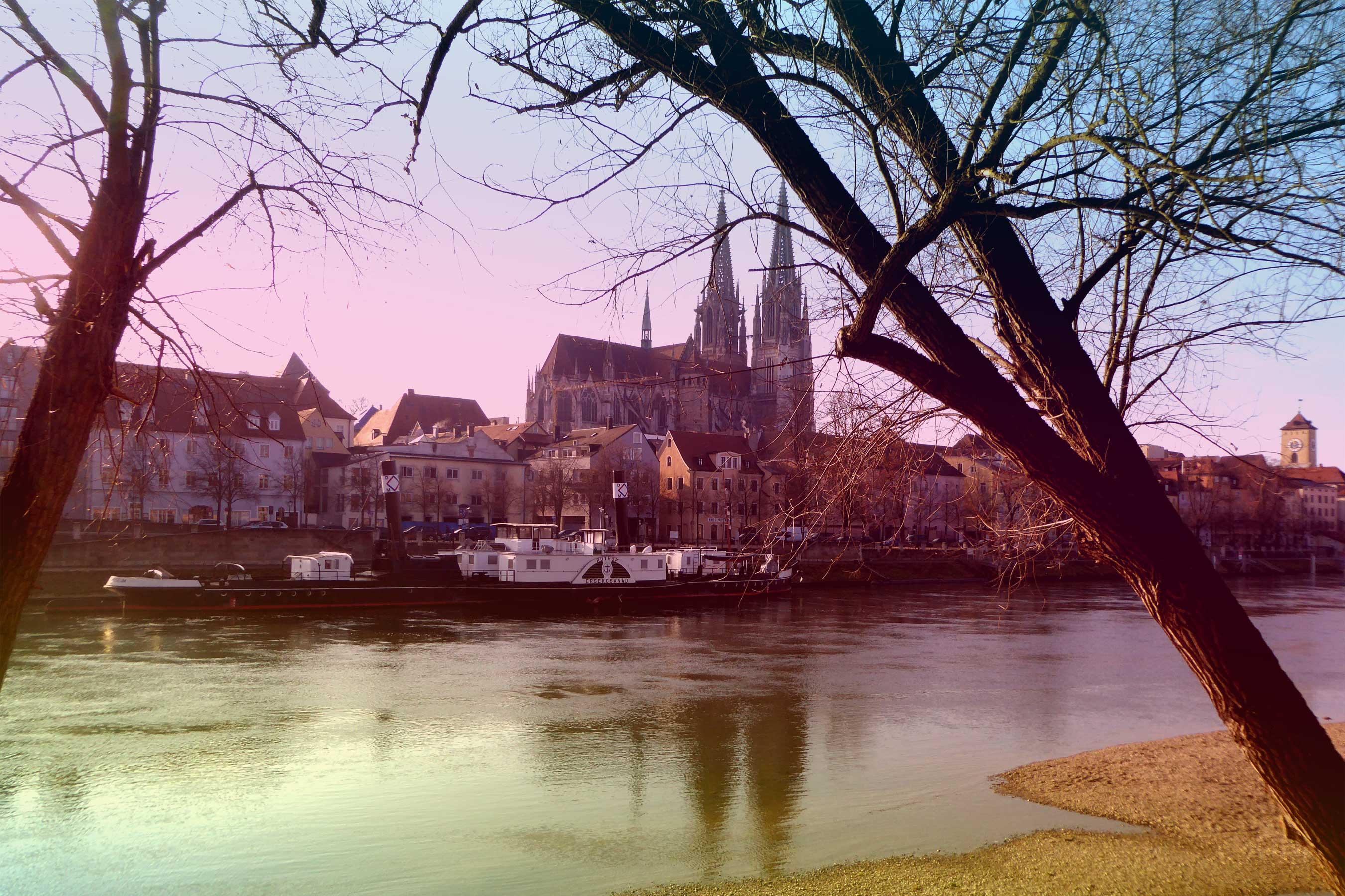 Spurensuche-Regensburg-Donau-Dom-Stadtpanorama
